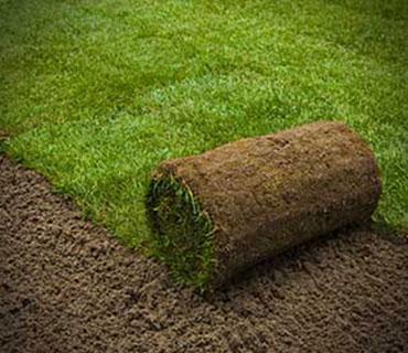Turfing & Grass Seeding