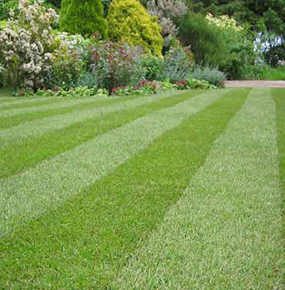 Landscaping and Gardening in Warrington