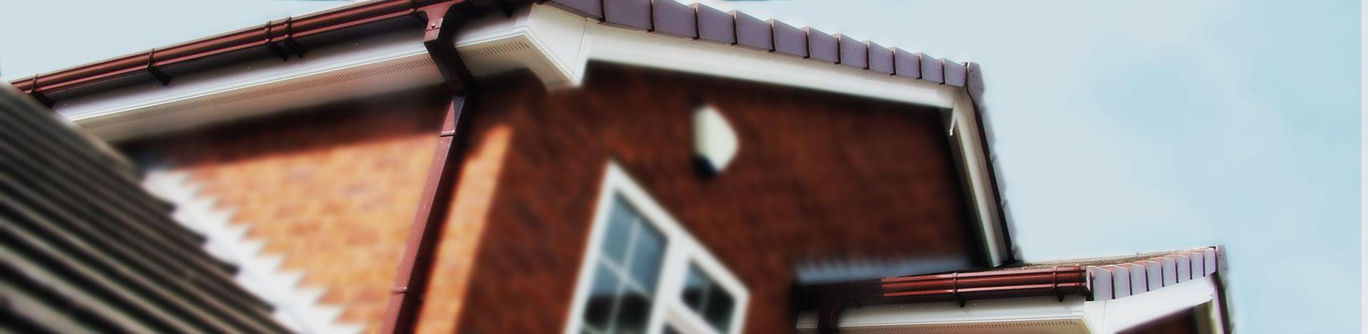 Roofline & Gutters